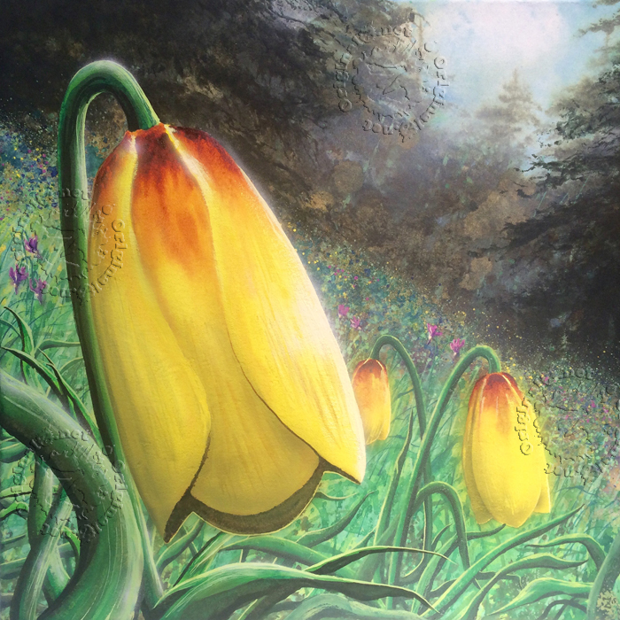 Yellow Bells Flower Watercolor by Montana artist Joe Ziolkowski