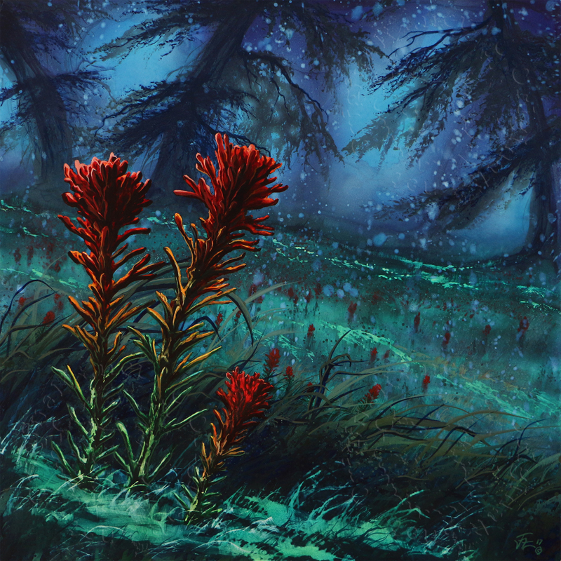 The Indian Paintbrush flower, watercolor painting by Montana artist Joe Ziolkowski.